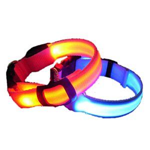 LED Hundehalsbånd, 5 farver, Medium