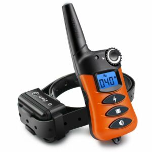 PET620-DEA Remote Dog Training Collar, Rechargeable
